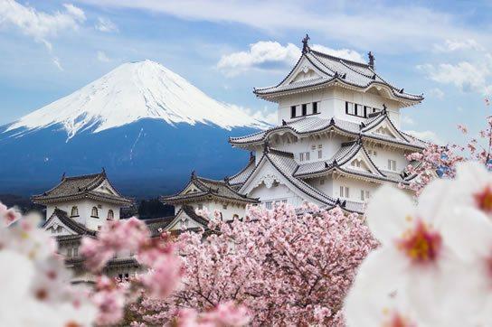 Kaoma Travel - Travel Agency - Bespoke